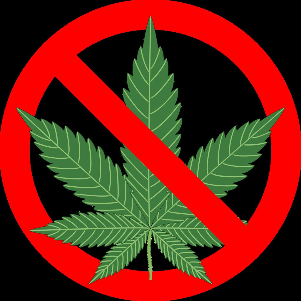cannabis, hemp, leaf